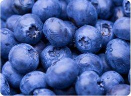 bluebarries.jpg